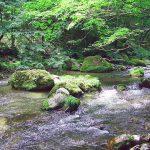 松倉川(まつくらがわ)