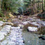 頓登川(とんどがわ)